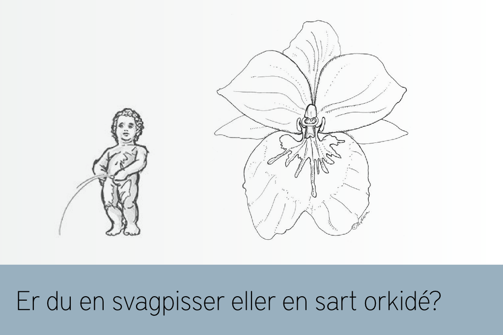 Svagpisser eller sart orkide? Om at kommunikere sin sensitivitet til omverdenen